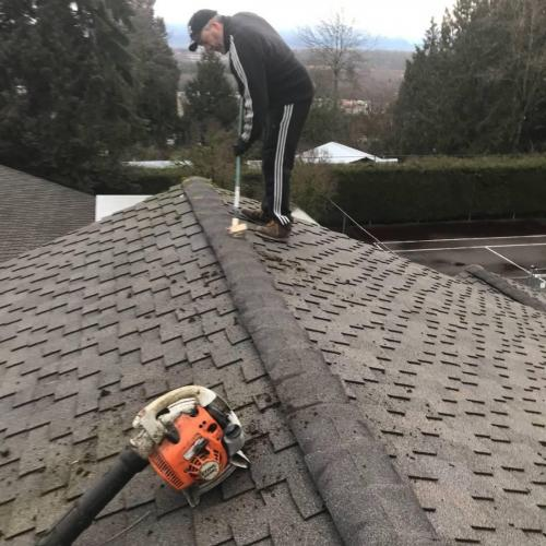 How to remove a moss from your roof